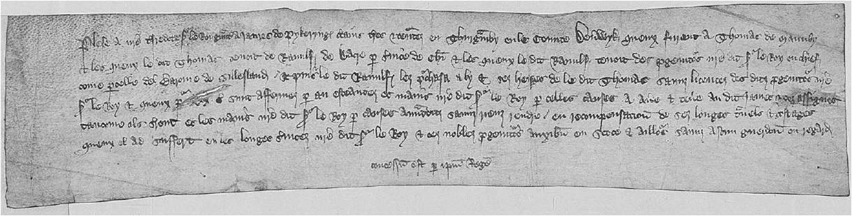 James de Pykering, petition to King Richard II for lands and tenements in Thorganby, 1382